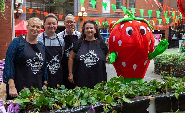 Strawberry Season gets Underway at The Galleries