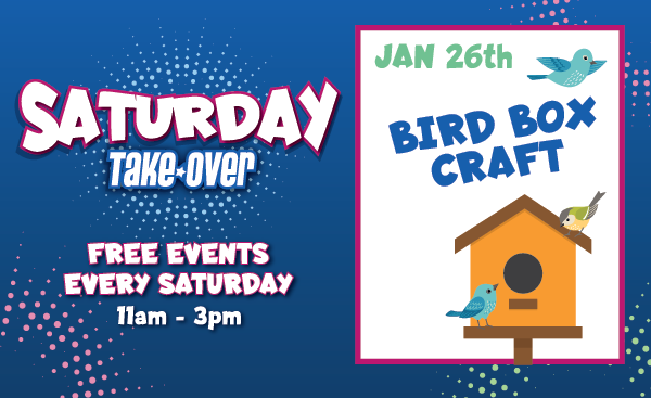 Bird Box Craft – January 26th